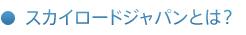 スカイロードジャパンとは?
